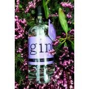 GIN Purple Edition