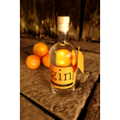 GIN Orange Edition
